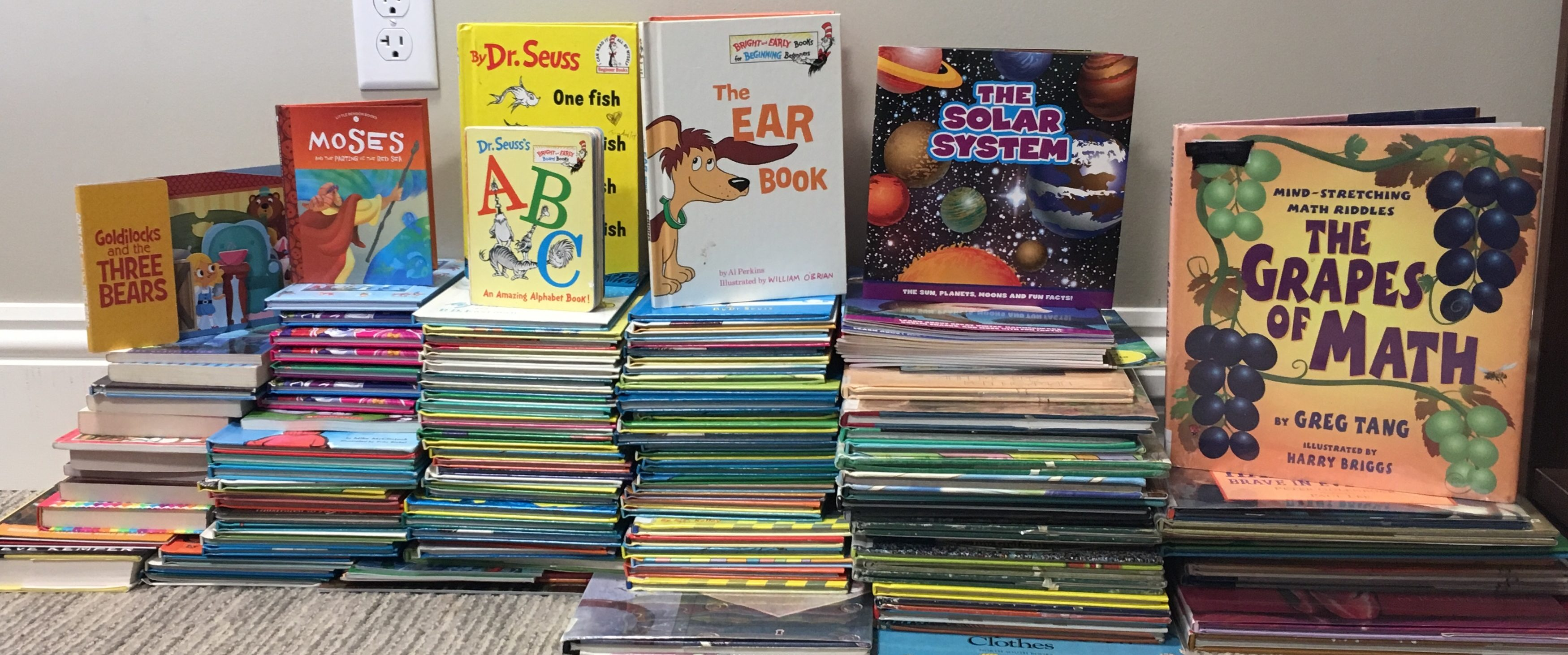The Solara Resort Book Drive
